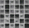 Eye tracking using low-cost USB and mobile phone cameras